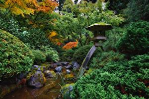 Фотография США Сады Камень Дизайн Кусты Ручей Мох Portland Japanese Garden