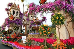 Обои США Парки Орхидеи Розы Бабочки Калифорния Дизайн Pasadena Природа