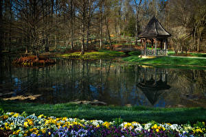 Фотографии Штаты Парки Пруд Анютины глазки Весна Gibbs Gardens Georgia
