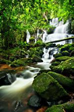 Фото Водопады Камень Мох Природа