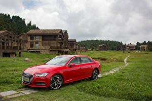 Фотография Audi Красный Металлик 2016 A4 L 45 TFSI quattro Машины