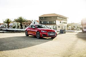 Фотография Audi Красный 2016-17 S5 Coupé Worldwide Машины
