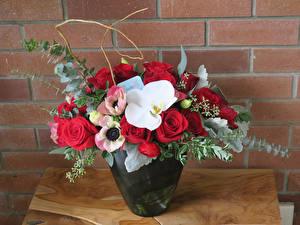 Фотография Букеты Ветреница Розы Орхидеи Ваза