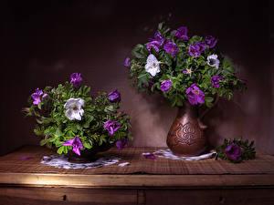 Фотографии Букеты Розы Ваза 2 Rosa L Цветы