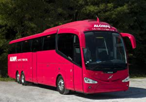 Фотографии Автобус Розовый 2011-18 Irizar i6 Volvo B13R 6×2