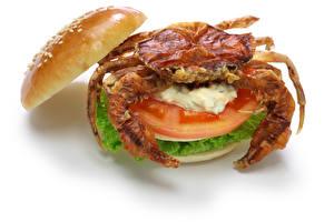 Фотография Крабы Овощи Гамбургер Белый фон Продукты питания