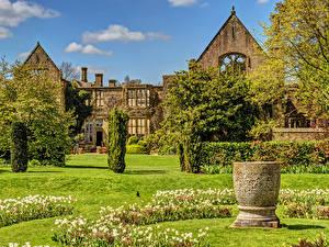 Фотографии Англия Дома Парки Тюльпаны Дизайн Кусты Nymans Города