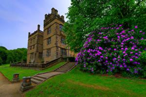 Картинки Англия Здания Рододендрон Дворец Лестница Кусты Gawthorpe Hall Padiham Города