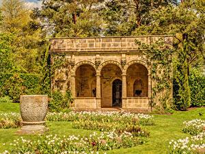 Картинка Англия Парки Здания Тюльпаны Дизайн Деревья Nymans gardens Природа