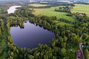 Картинка Эстония Озеро Поля Леса Lake Kuuni Природа