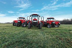 Обои Поля Сельскохозяйственная техника Трактор Case IH Farmall C Животные картинки