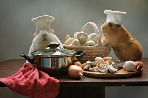 Картинка Морские свинки Грибы Лук репчатый Стол Двое Корзина Шапки Животные