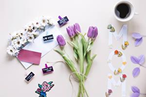 Фотографии Праздники Тюльпан Кофе Цветной фон Чашка Цветы