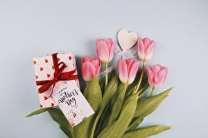 Обои Праздники Тюльпаны Серый фон Розовый Сердечко Подарки Цветы