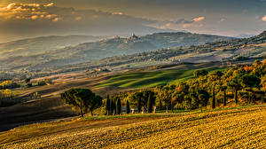 Картинка Италия Тоскана Пейзаж Поля Холмы Дерево Природа