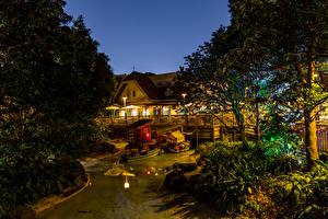 Обои Япония Диснейленд Парки Дома Пруд Дизайн Ночь Деревья Природа картинки