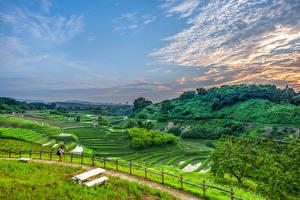 Картинки Япония Поля Небо Холмы Забора Природа