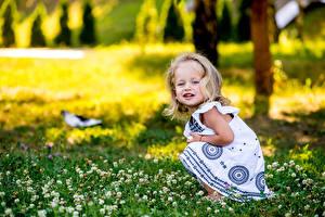 Картинки Девочки Трава Взгляд Ребёнок