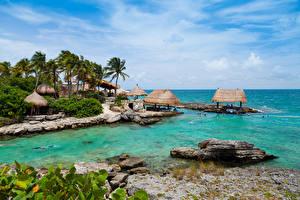 Картинки Мексика Берег Камень Cancun Природа