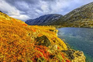 Картинки Норвегия Горы Озеро Осень Трава