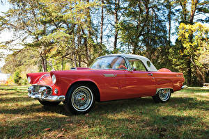 Фото Старинные Ford Розовый Металлик 1956 Thunderbird Special 312-225 HP Автомобили