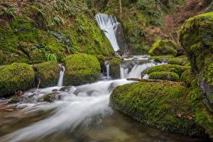Картинка Шотландия Водопады Утес Мох Clackmannanshire