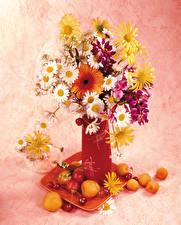 Фотографии Натюрморт Букеты Герберы Ромашки Абрикос Черешня Ваза Цветы