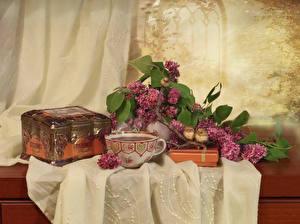 Фотография Натюрморт Сирень Чай Птицы Клад Чашка Пища Цветы
