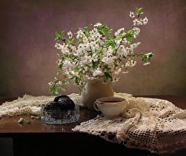 Фотография Натюрморт Зефир Шоколад Цветущие деревья Чай Чашка Ветвь Стол Пища
