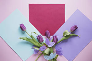 Обои Тюльпаны Шаблон поздравительной открытки Лист бумаги Цветы