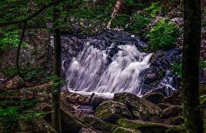 Картинка Штаты Парки Водопады Камень Мох Campbell Falls State Park Природа