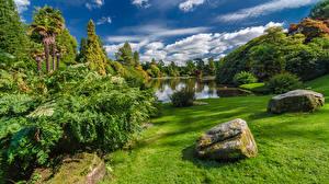 Обои Великобритания Парки Пруд Камень Дизайн Кусты Трава Sheffield Park Garden