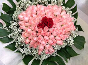 Картинка Букеты Розы Розовый Цветы