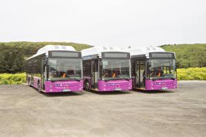 Обои Автобус Трое 3 Спереди 2014-17 Temsa Avenue LF CNG