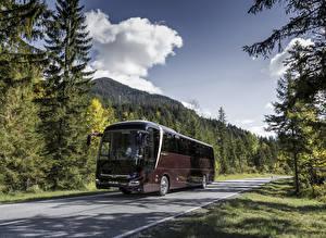 Фото Автобус Бордовый Металлик 2017 MAN Lion's Coach C
