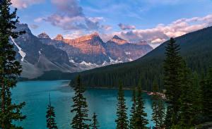 Картинки Канада Горы Озеро Леса Пейзаж Moraine Lake Alberta Природа