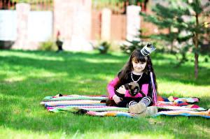 Картинки Кошка Корона Девочки Униформа Сидящие Смотрят Дети