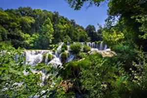 Картинки Хорватия Парки Водопады Дерево Krka National Park Природа