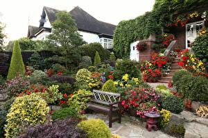 Фотография Англия Сады Кусты Скамейка Дизайн Walsall Garden Природа