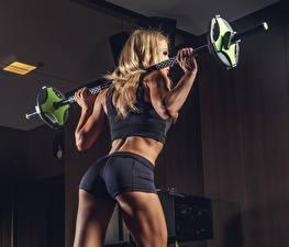 Картинки Фитнес Тренировка Штанга Сзади Шорты Ягодицы девушка Спорт