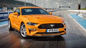 Обои Форд Оранжевый 2018 Fastback Mustang GT Авто