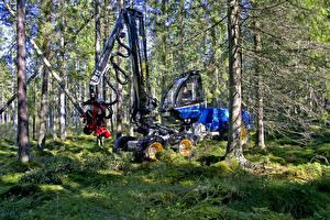 Обои Леса Деревья 2015-18 Rottne H11D 6WD harvester картинки