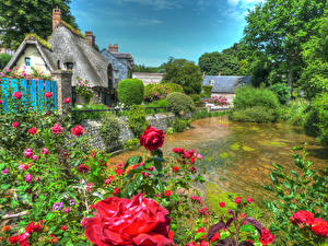 Фото Франция Дома Речка Розы HDRI Кусты Veules-les-Roses Normandy Города