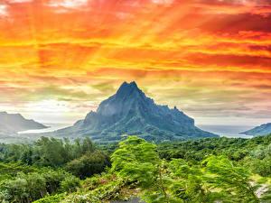 Фотография Французская Полинезия Тропики Горы Небо Деревья Кусты Природа