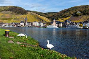 Картинки Германия Здания Речка Пирсы Речные суда Корабли Гуси Холмы Bernkastel-Kues Города