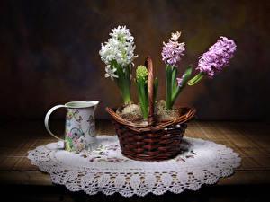Картинки Гиацинты Корзина Стол Цветы