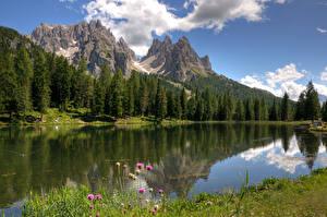 Фотография Италия Горы Озеро Лес Lake Misurina Природа