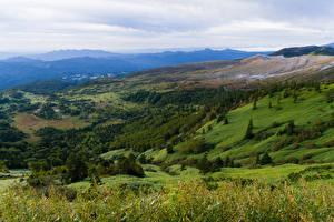 Фото Италия Пейзаж Леса Луга Холмы