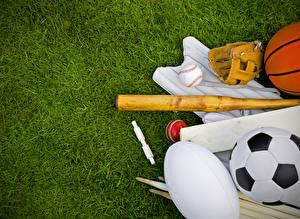 Картинки Газоне Мячик Бейсбольная бита спортивная