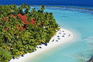 Обои Мальдивы Тропики Курорты Пляж Пальмы Kurumba Природа